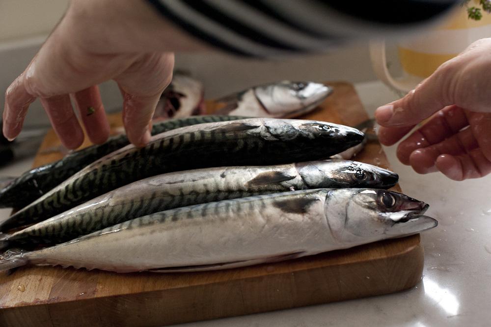Roger's Fresh Fish & Deli, Chipping Norton