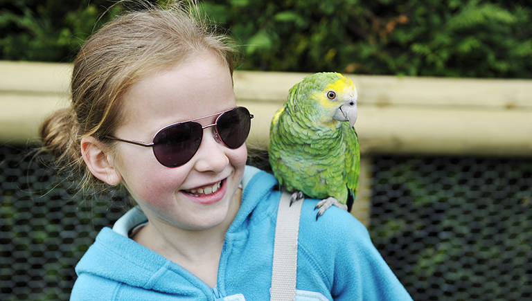 Birdland Park & Gardens, Bourton-on-the Water