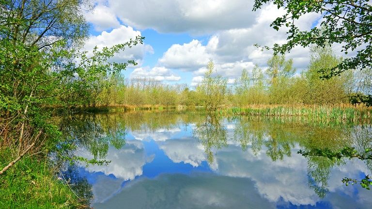 Cotswold Water Park, South Cerney