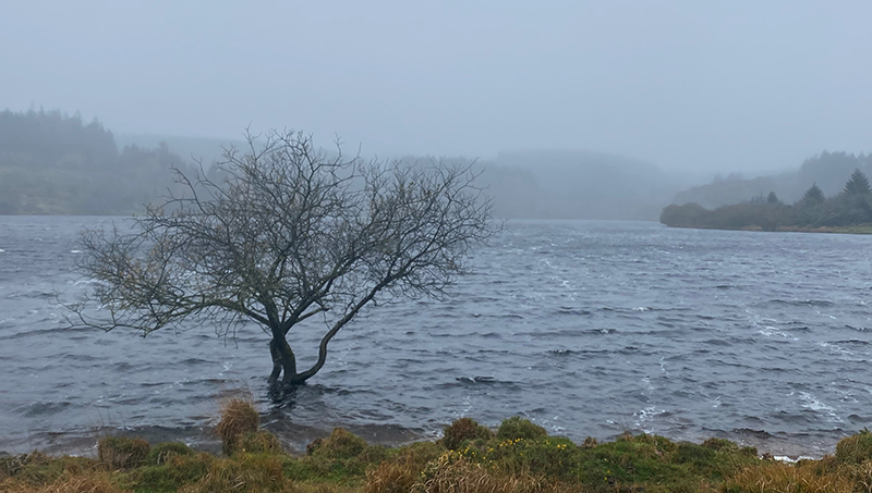 Fernworthy Reservoir, Dartmoor