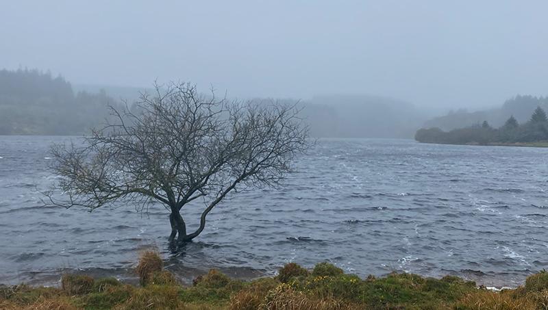 Fernworthy Reservoir, Dartmoor