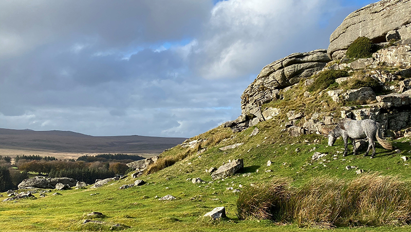 Discovering hidden Dartmoor