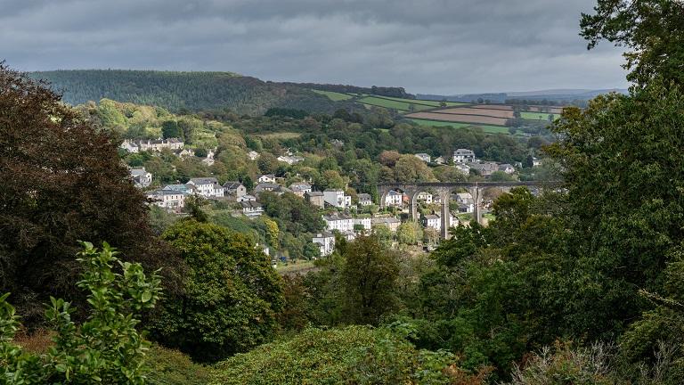 The Tamar Trails, Devon