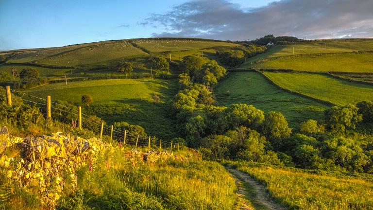 Walking Trails in Devon