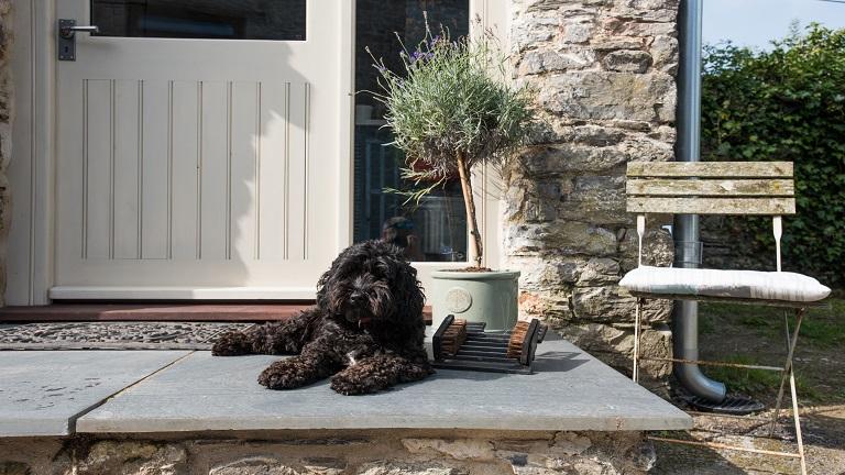 Luxury dog friendly holidays