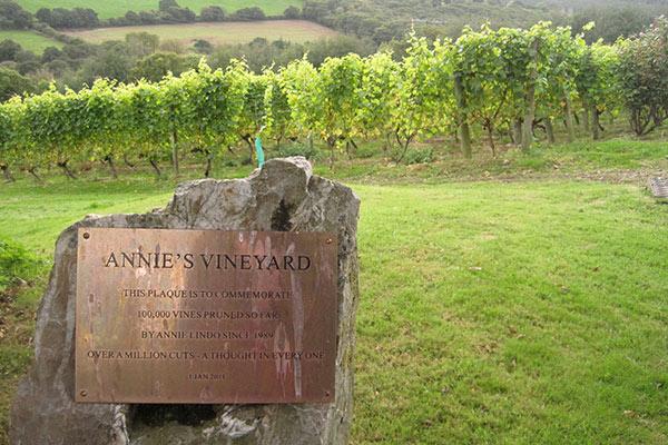 Annie's Vineyard, Camel Valley