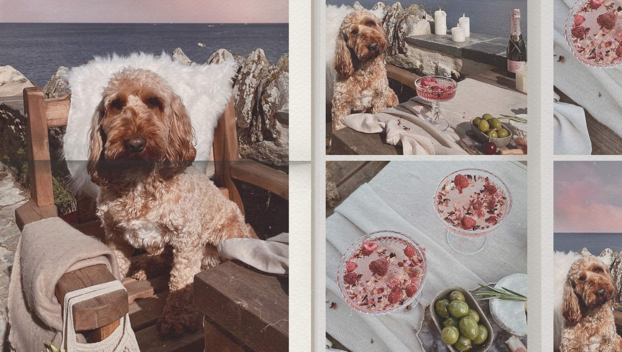 Cooper's Coastal Adventure at An Dyji